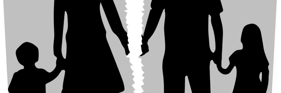 LA PENSIÓN DE ALIMENTOS: CARACTERÍSTICAS Y ASPECTOS CONTROVERTIDOS
